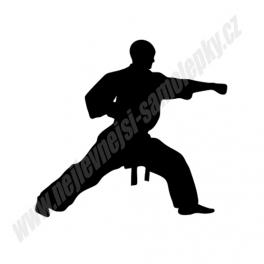 Samolepka Taekwondo