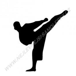 Samolepka Karate