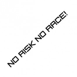 Samolepka No Risk No Race !