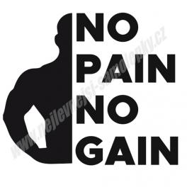 Samolepka No Pain No Gain
