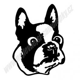 Samolepka Anglický bulldog